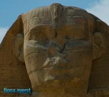 Fiona Ayerst Egypt-10
