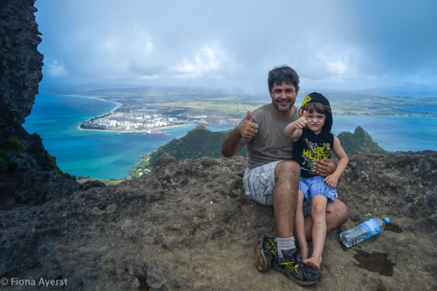 the top of Mt Manaia